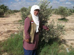 Kebun Zaitun, Asdaa Land, Gaza