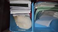 Icung di boks biru (1)